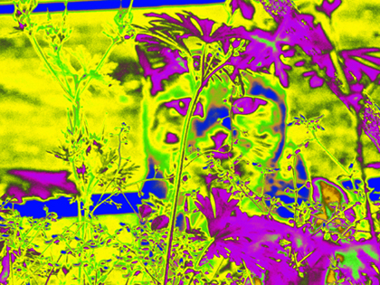 006-002イエロー紫オレンジ2.jpg